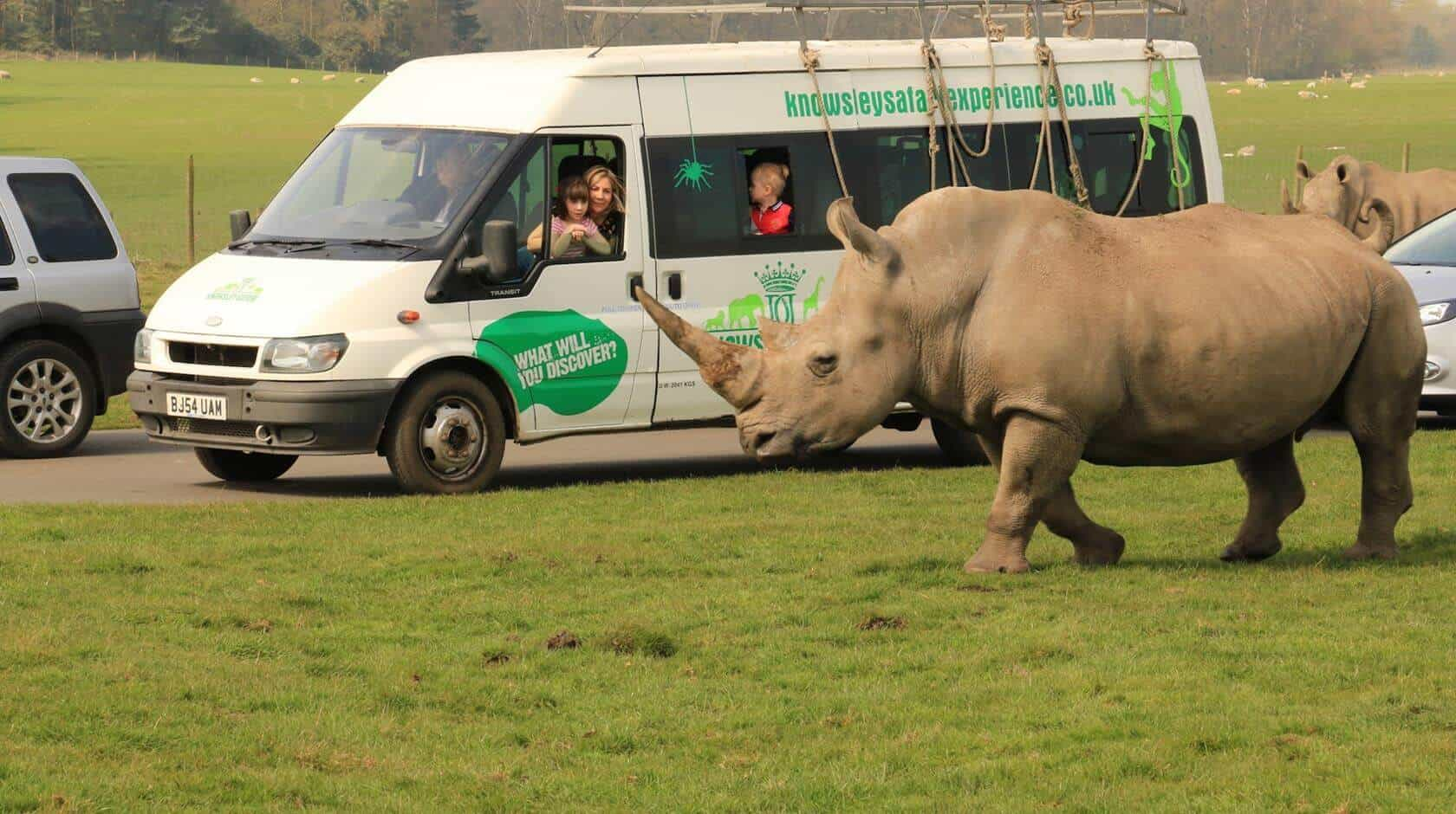 4 Great family attractions in Knowsley