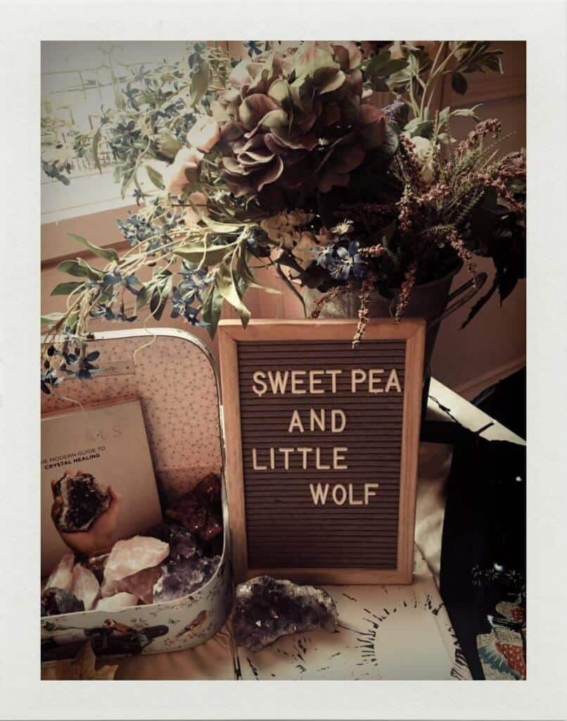 Little Wolf Wellbeing Events Liverpool