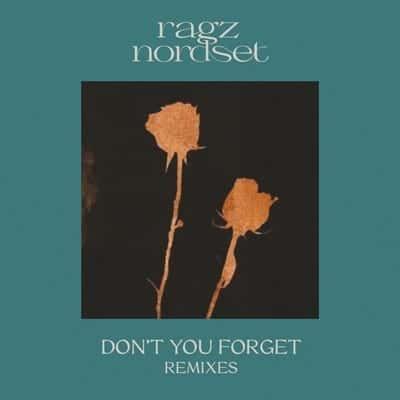 Ragz Nordset – Don't You Forget - Remixes