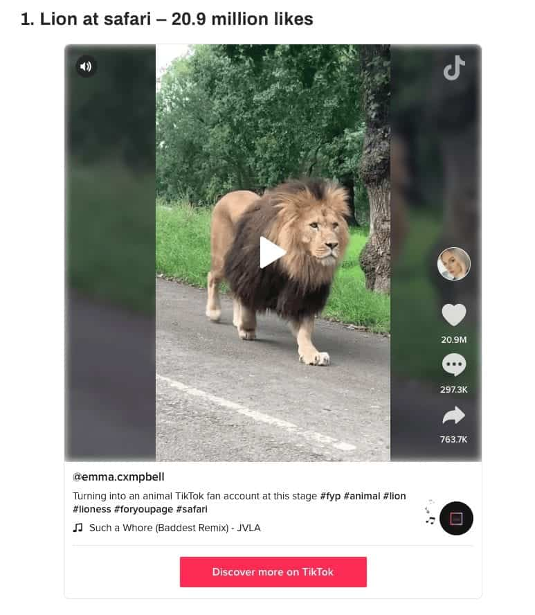 Knowsley Safari's Sam, the lion, becomes the star of the most watched 2020 TikTok video in the UK!