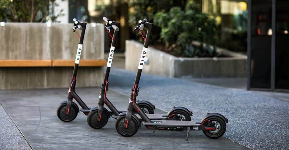 Global e-scooter brand Bird, partners with Liverpool safety app leaders, Busby