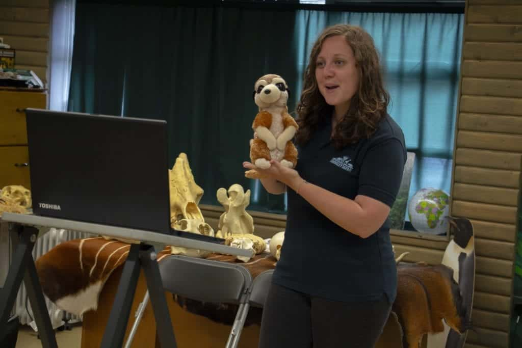 Go Wild at Home with Knowsley Safari - FREE educational LIVE STREAM events and online activities