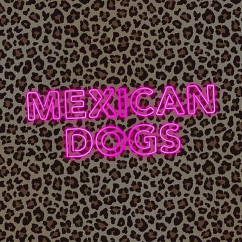 Liverpool band Mexican Dogs Sign to Fretsore Records